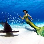 Professional Mermaid Kat swimming with wild hammerhead shark