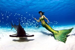 Professional Mermaid Kat swimming with wild hammerhead shark