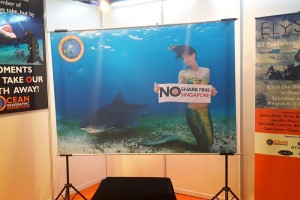 Mermaid Kat billboard in Singapore