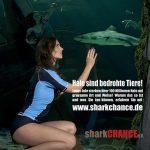 Mermaid Kat saves sharks in Germany