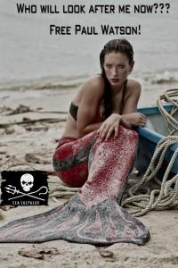Mermaid Kat supporting Sea Shepherd