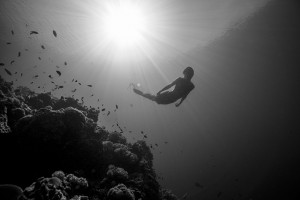 Mermaid Kat swimming underwater in the Philippines