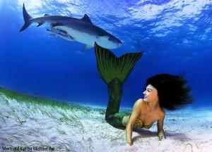 Mermaid Kat swimming with a tiger shark