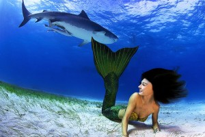 Mermaid Kat swimming with a tiger shark by Michael Aw