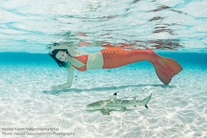 Mermaid Kat swimming with baby shark in the Maldives