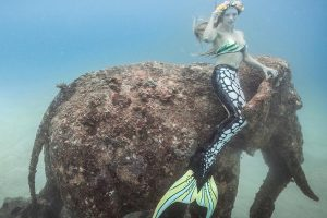 professional mermaid and underwater model