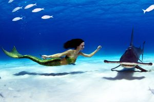 places for mermaiding kat in the bahamas