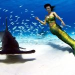 Underwater stunt model with sharks