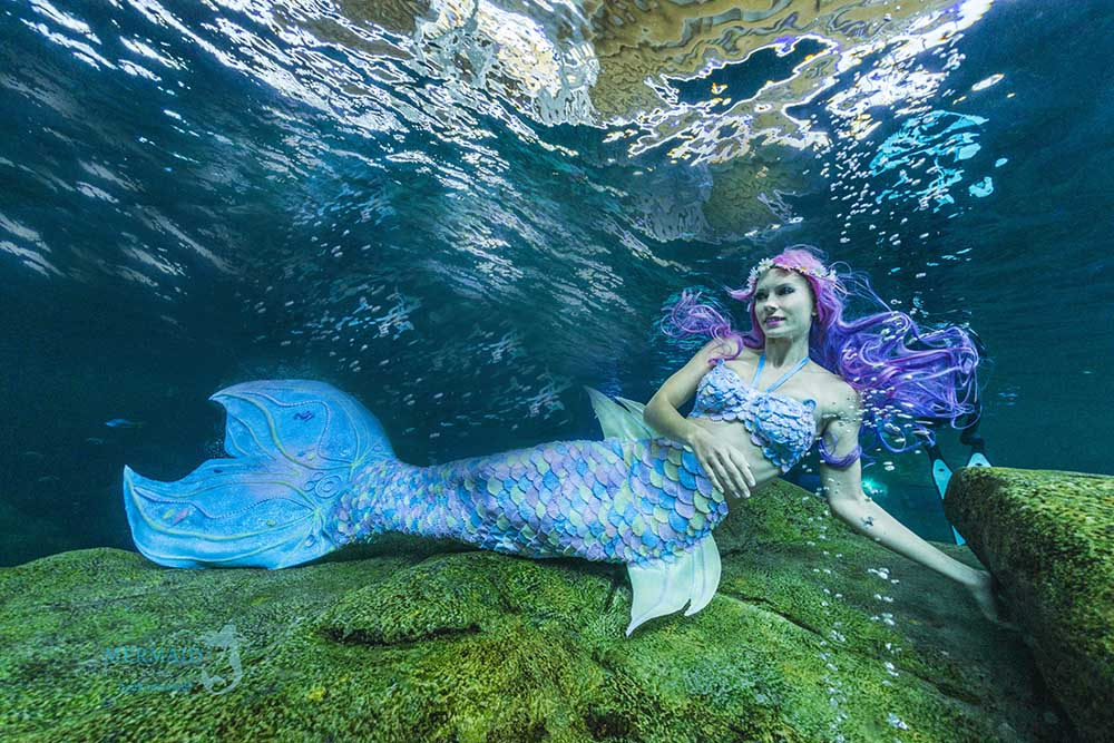 How to become a professional mermaid