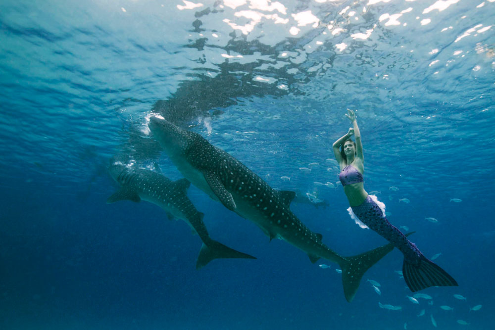 Join the Mermaid Week in the Maldives