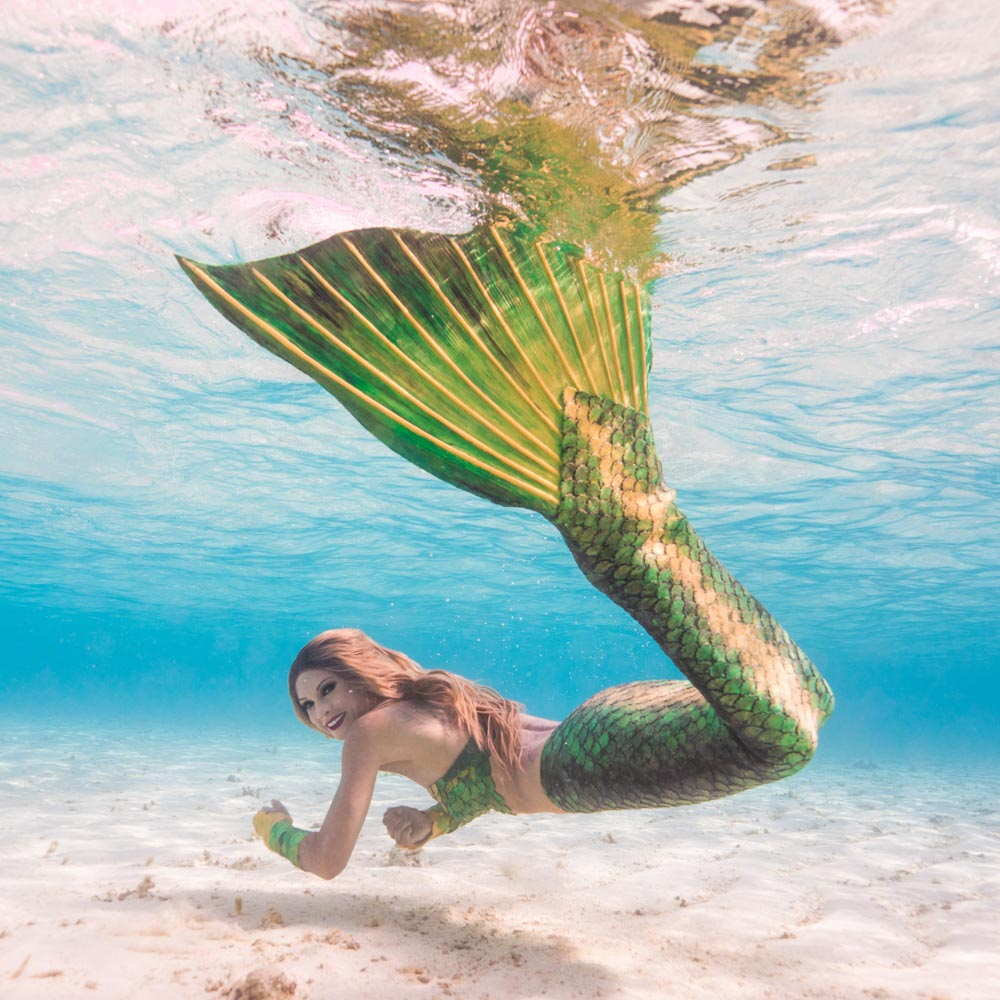 Pro Mermaid has the dream job